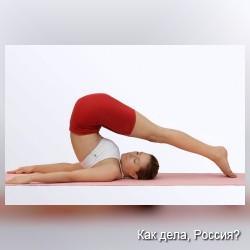 Спина. Упражнения для укрепления мышц спины.