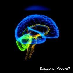 К шестидесяти мозг достигает расцвета