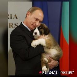 Владимир Владимирович и животные)