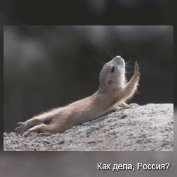 C йогой по жизни! Фото