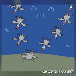 Животные в карикатурах. Фото