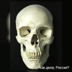 У британца заново выросла поврежденная черепная кость