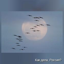 Приблизившаяся к Земле Луна покрасовалась в облаках