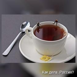 """Фотопроект Кристофера Бофоли """"Несоразмерность"""""""
