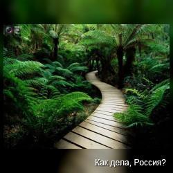 Прекрасные пейзажи Земли